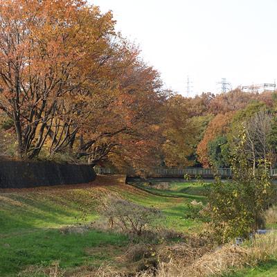 20071212-07.jpg