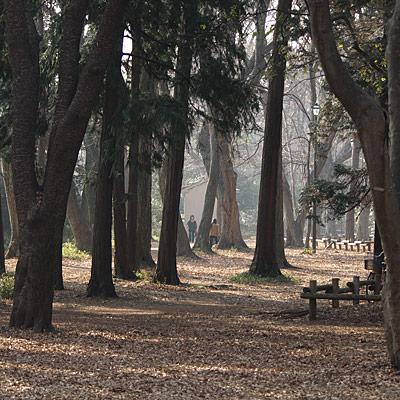20080113_23.jpg
