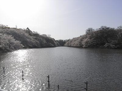 20080402_012.jpg