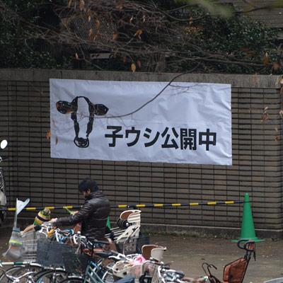 20081124_075.jpg