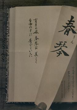 20090312-2.jpg