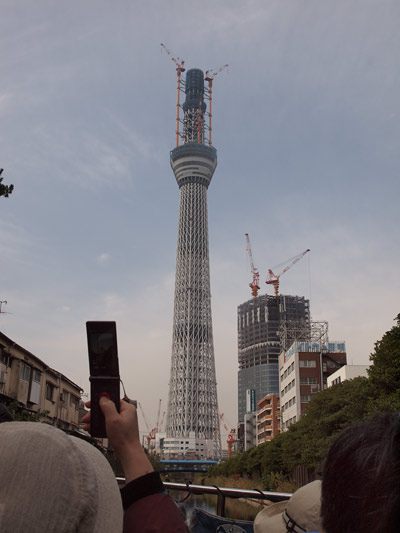 20101113_200.jpg